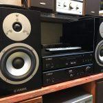 Dàn âm thanh bãi là gì? Có nên mua dàn âm thanh bãi không?